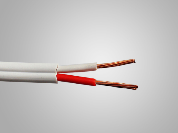AS/NZS 5000.2TPS 2C+E Flat Cable with Australia Standard